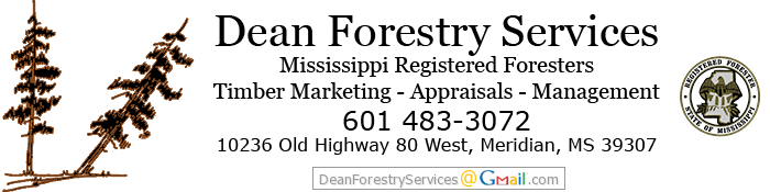 Dean Forestry Services